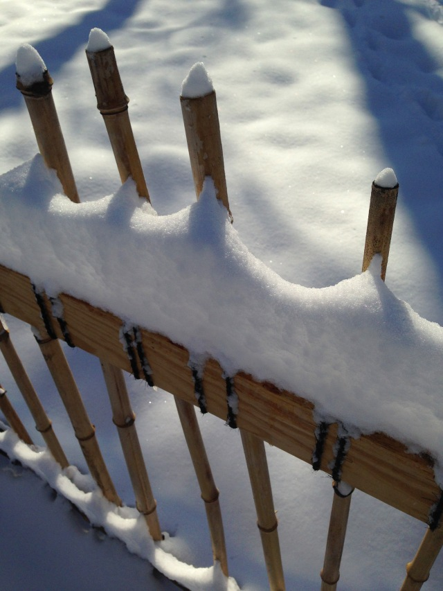 aa 1 bamboo fence snow